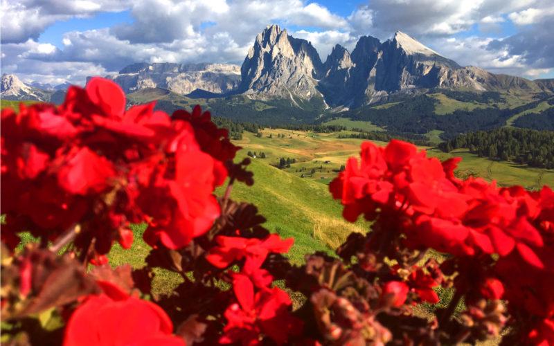 Alpe do Siusi