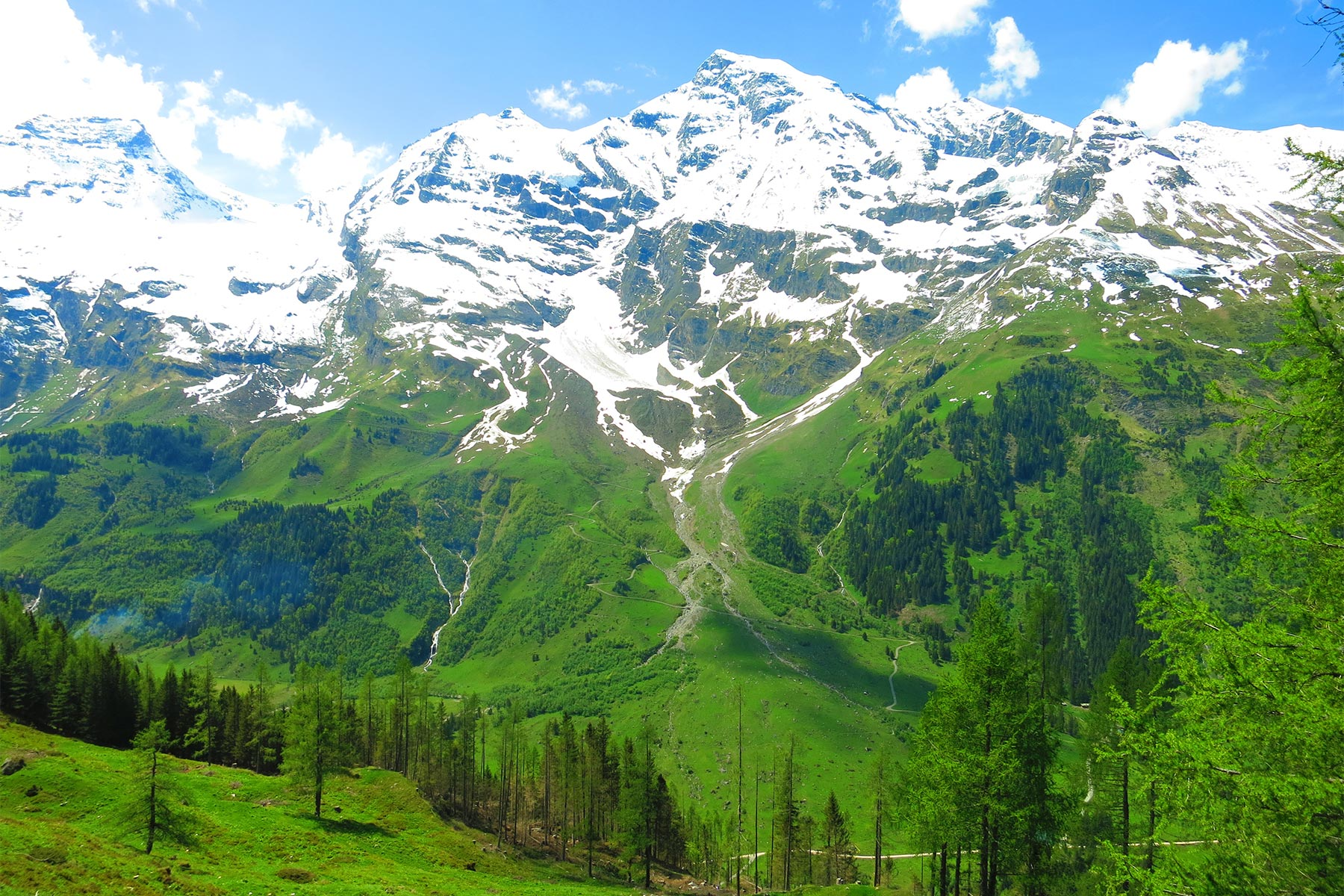 Grossglockner green
